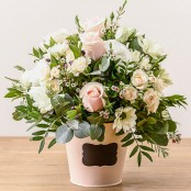 Dawn - Vintage Arrangement